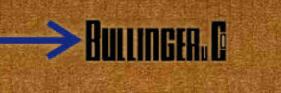 Bullinger Speditions GmbH & Co KG