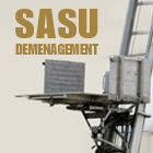 SASU DTV